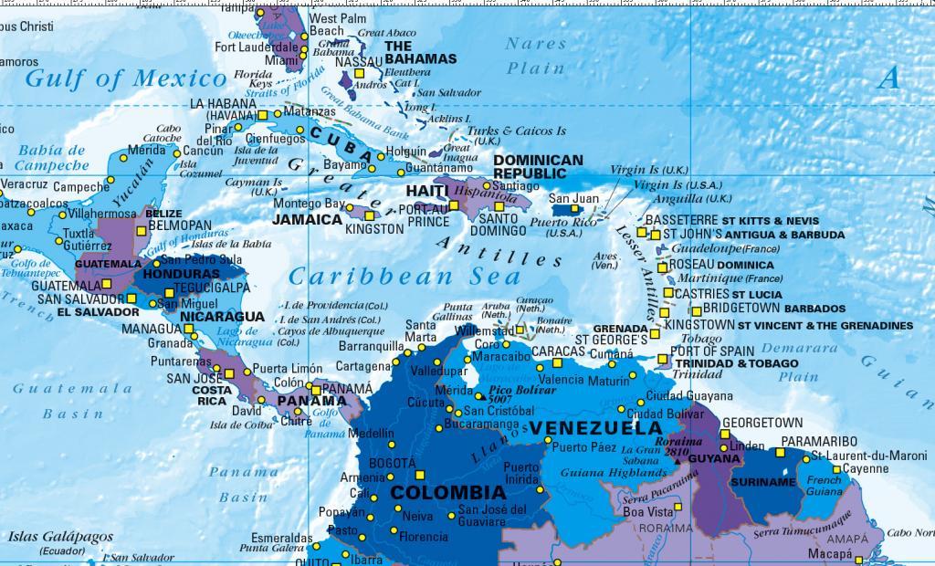 World Map decor - blue and purple (large)
